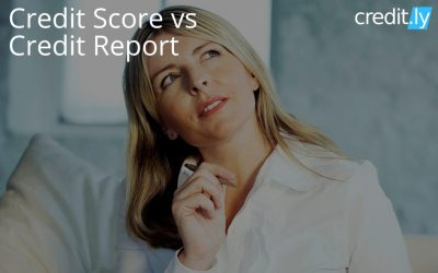 What's the Difference between Credit Score vs Credit Report?