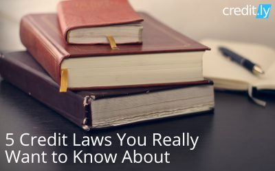 5 Credit Laws You Really Want to Know About