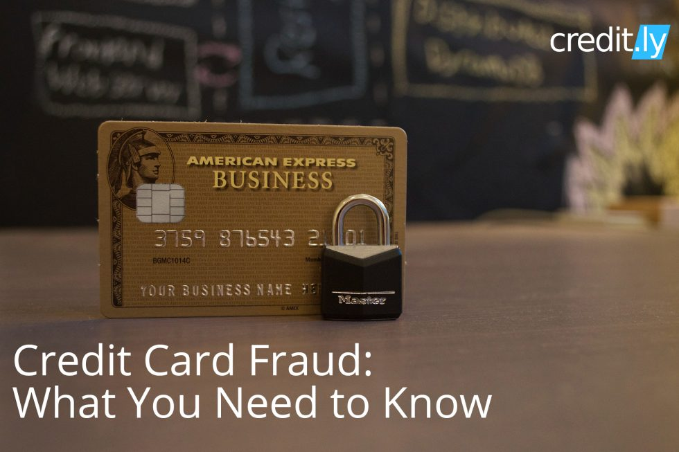 Credit Card Fraud - Credit History - Credit Card Skimming - Cedit Ratings